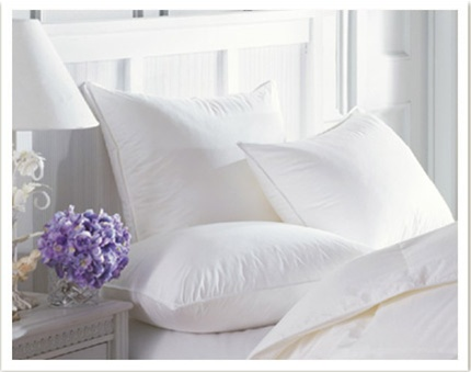 Our European White Goose Down Pillows are now hypo-allergenic for sensitive sleepers. Freshness guarantee with anti-microbial protection to prevent the growth of bacteria and mildew. Each pillow is covered with a down proof ticking.